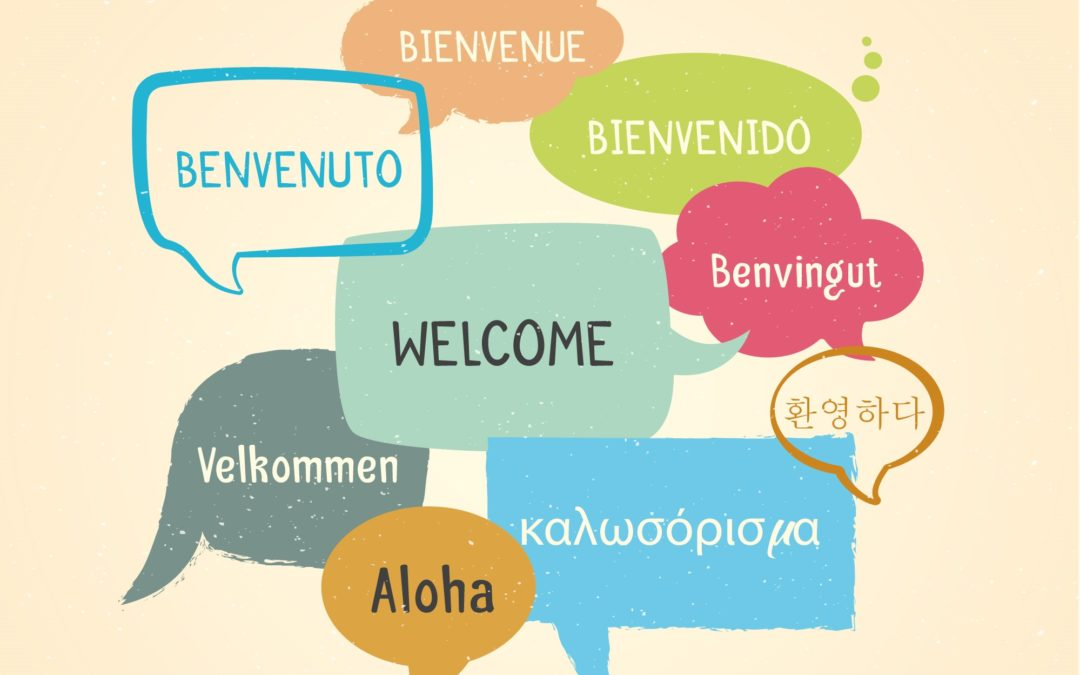 ¡Bienvenidos a nuestro nuevo portal web!